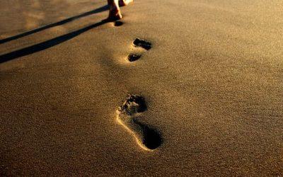 Évangélisation, discipulat, et formation spirituelle : quelles différences ?